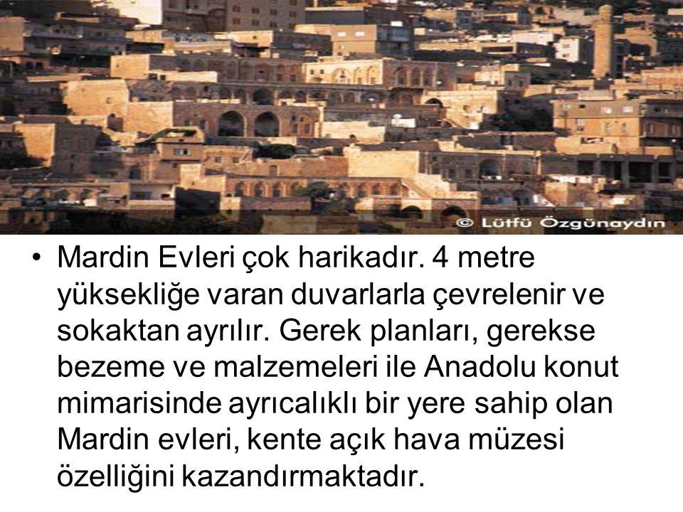 Mardin Evleri çok harikadır.4 metre yüksekliğe varan duvarlarla çevrelenir ve sokaktan ayrılır.