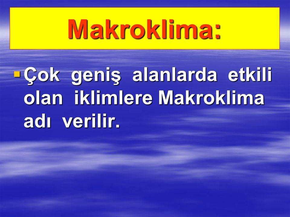 Makroklima: ÇÇÇÇok geniş alanlarda etkili olan iklimlere Makroklima adı verilir.