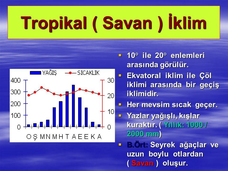 Tropikal ( Savan ) İklim  10° ile 20° enlemleri arasında görülür.  Ekvatoral iklim ile Çöl iklimi arasında bir geçiş iklimidir.  Her mevsim sıcak g