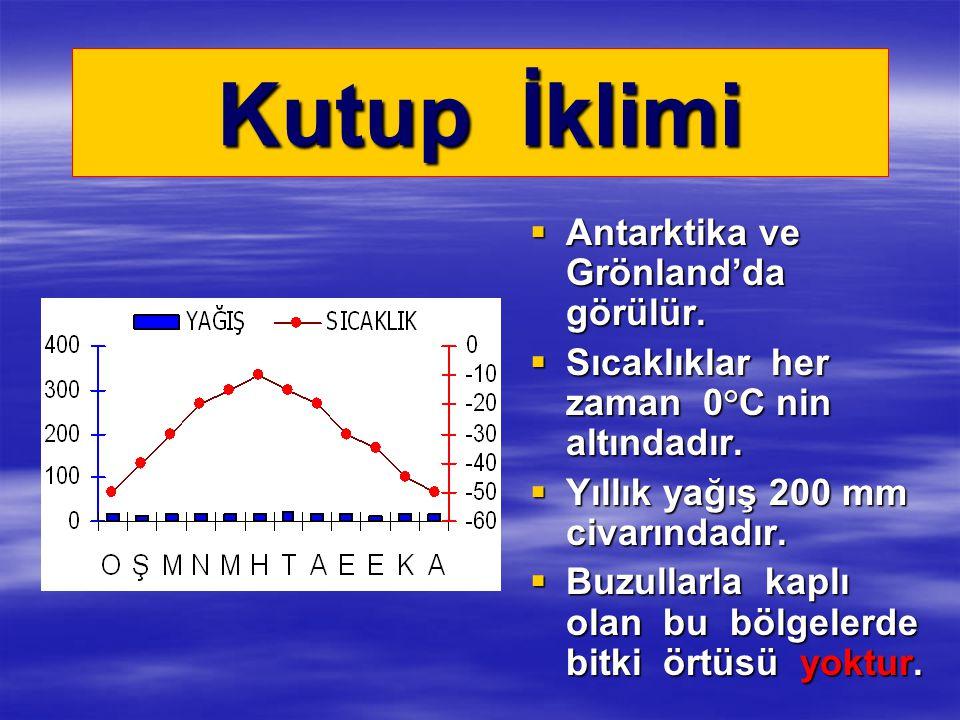 Kutup İklimi  Antarktika ve Grönland'da görülür.  Sıcaklıklar her zaman 0°C nin altındadır.  Yıllık yağış 200 mm civarındadır.  Buzullarla kaplı o