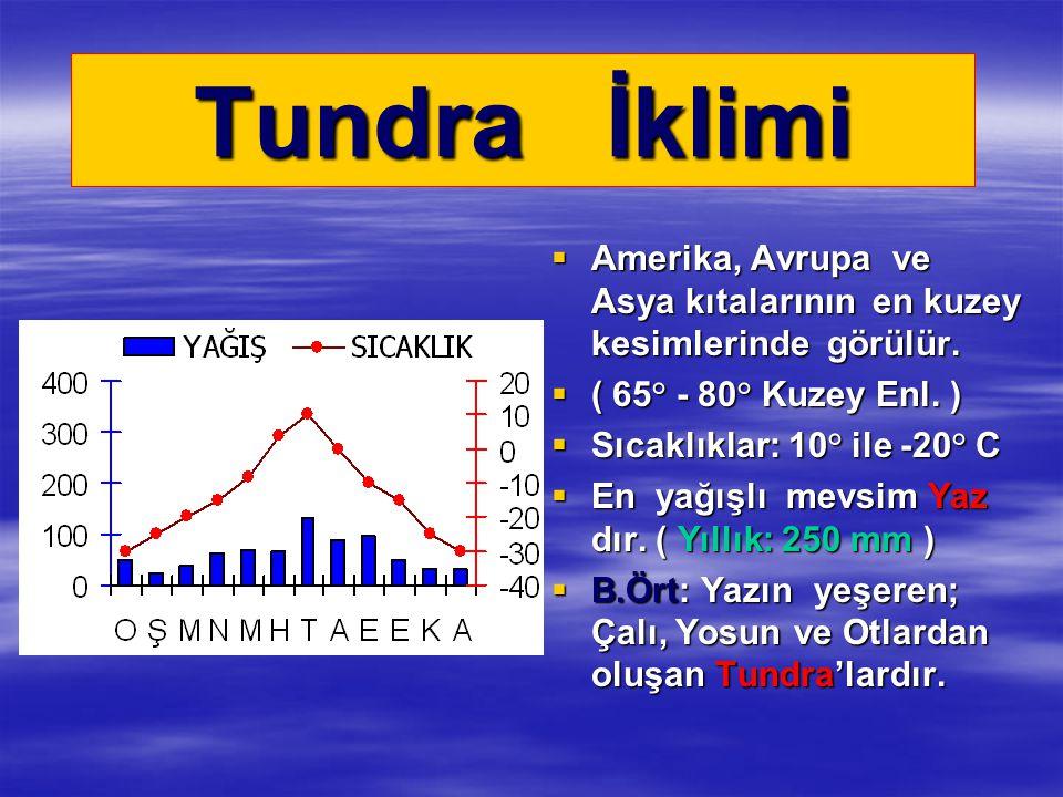 Tundra İklimi  Amerika, Avrupa ve Asya kıtalarının en kuzey kesimlerinde görülür.  ( 65° - 80° Kuzey Enl. )  Sıcaklıklar: 10° ile -20° C  En yağış