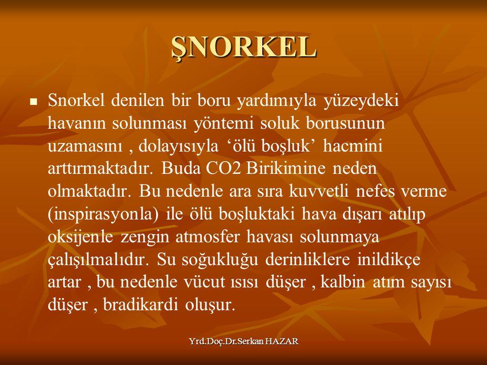 Yrd.Doç.Dr.Serkan HAZAR ŞNORKEL Snorkel denilen bir boru yardımıyla yüzeydeki havanın solunması yöntemi soluk borusunun uzamasını, dolayısıyla 'ölü bo