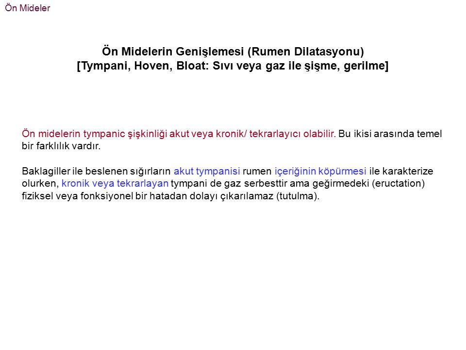 Ön Mideler 1- Akut, Primer tympanie Primer tympani, köpüklü şişkinlik olarak da adlandırılır.