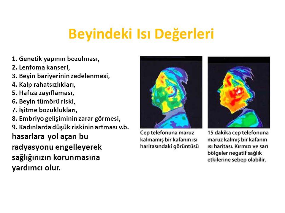 Beyindeki Isı Değerleri 1.Genetik yapının bozulması, 2.