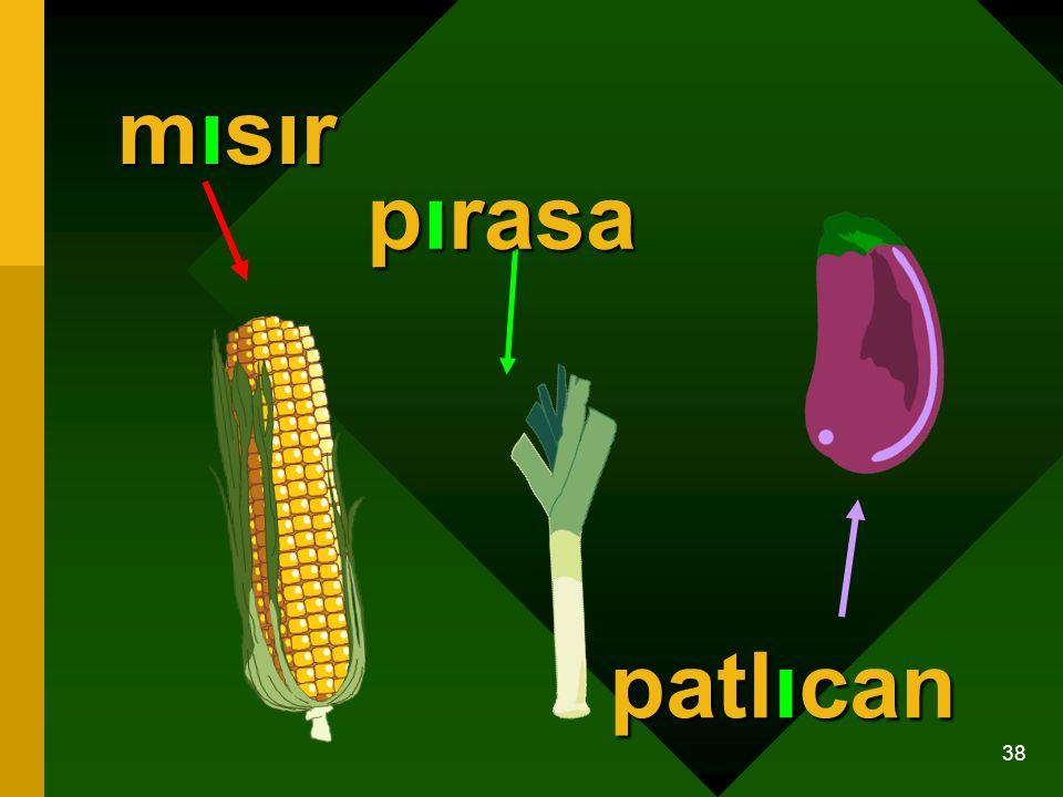 38 mısır pırasa patlıcan