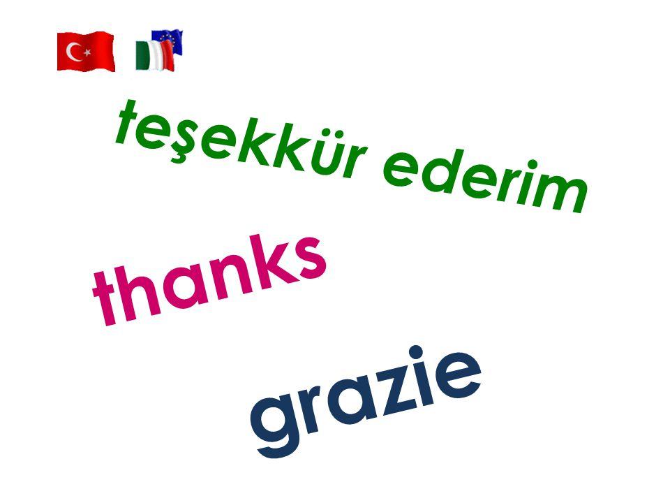 teşekkür ederim thanks grazie