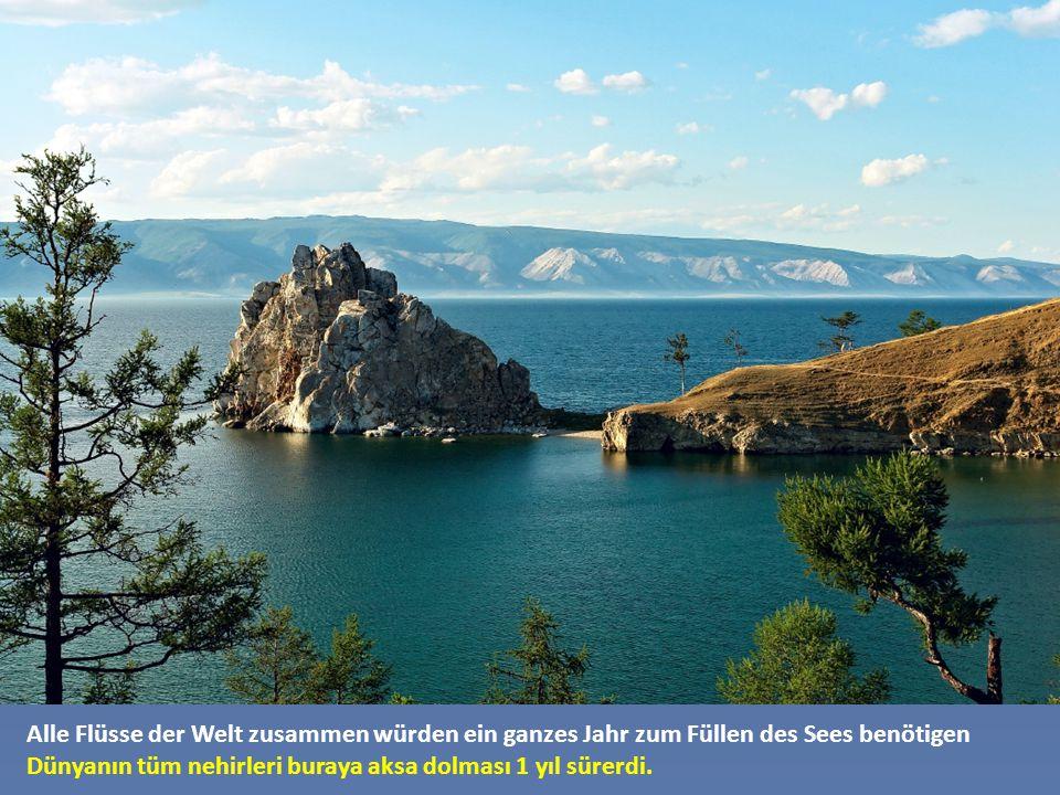 Es ist der größte See der Welt nach dem Wasservolumen. 650 km lang und zwischen 29 und 80 km breit und 1.620 Meter tief. Su miktarına göre dünyanın en