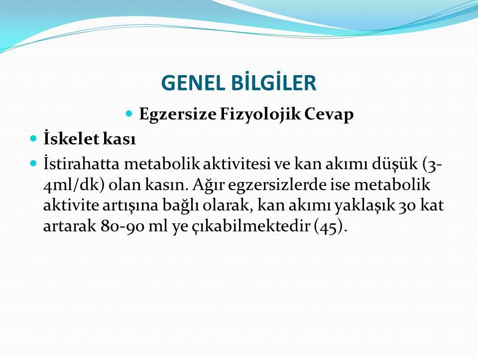 GENEL BİLGİLER Egzersize Fizyolojik Cevap İskelet kası İstirahatta metabolik aktivitesi ve kan akımı düşük (3- 4ml/dk) olan kasın. Ağır egzersizlerde