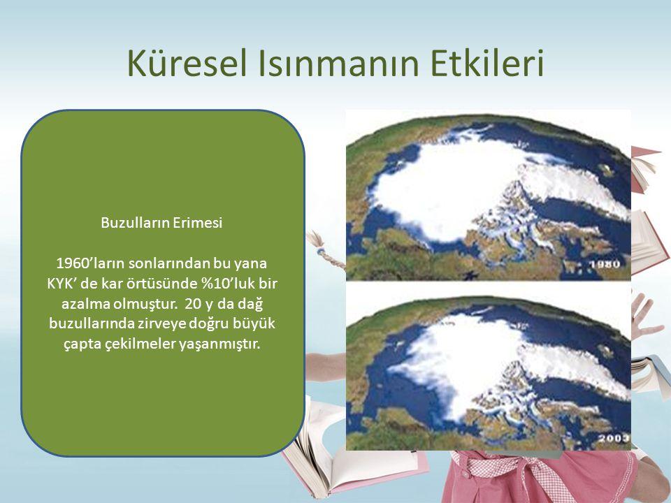 Küresel Isınmanın Etkileri Buzulların Erimesi 1960'ların sonlarından bu yana KYK' de kar örtüsünde %10'luk bir azalma olmuştur. 20 y da dağ buzulların