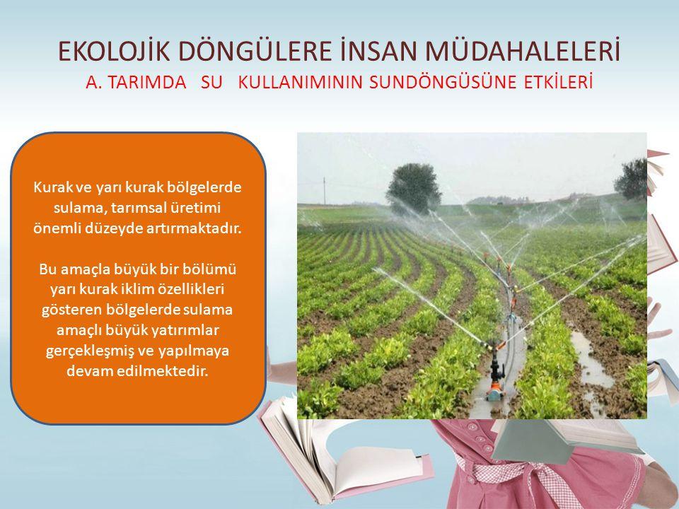 EKOLOJİK DÖNGÜLERE İNSAN MÜDAHALELERİ A. TARIMDA SU KULLANIMININ SUNDÖNGÜSÜNE ETKİLERİ Kurak ve yarı kurak bölgelerde sulama, tarımsal üretimi önemli