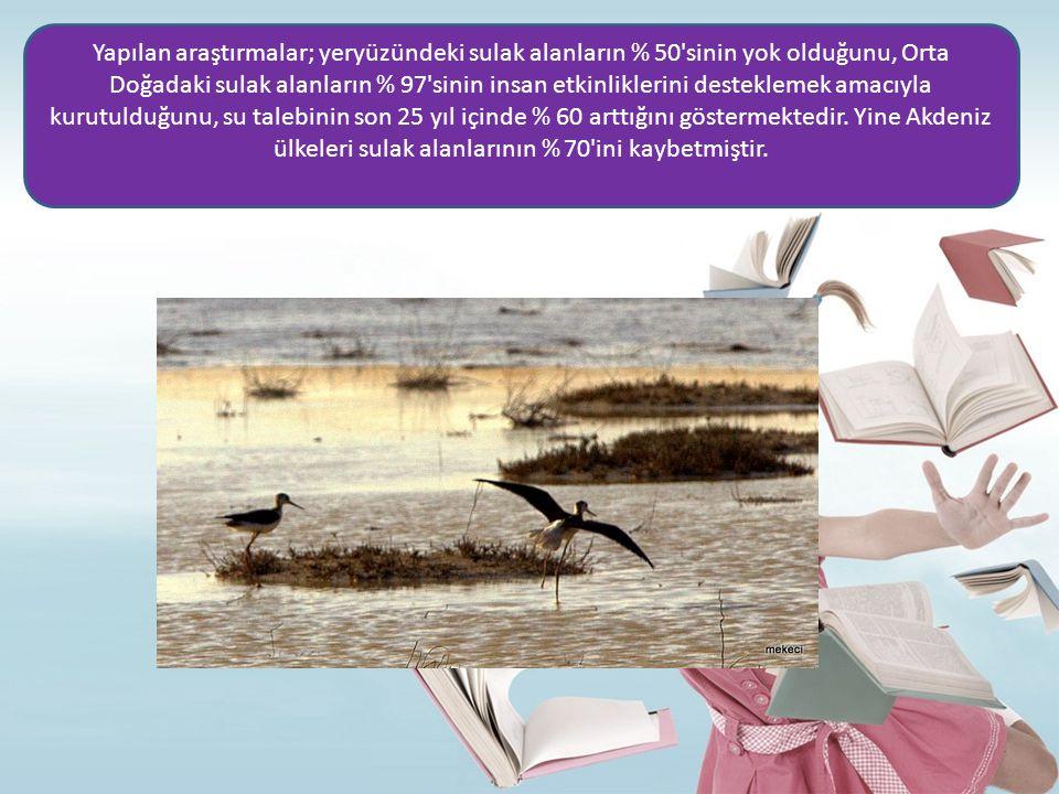 Yapılan araştırmalar; yeryüzündeki sulak alanların % 50'sinin yok olduğunu, Orta Doğadaki sulak alanların % 97'sinin insan etkinliklerini desteklemek