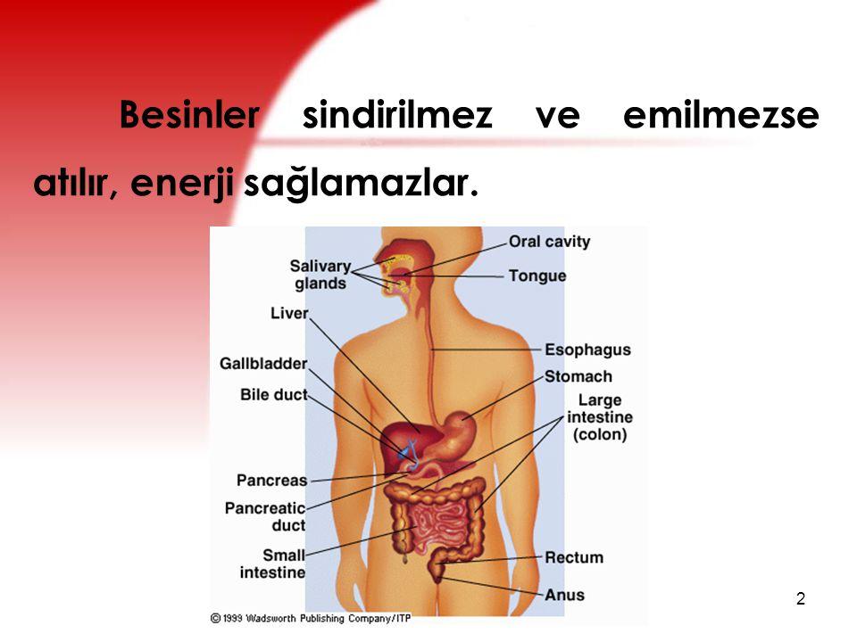 Sindirim ve Emilim 3 Vücut için gerekli besin öğelerini oluşturur.