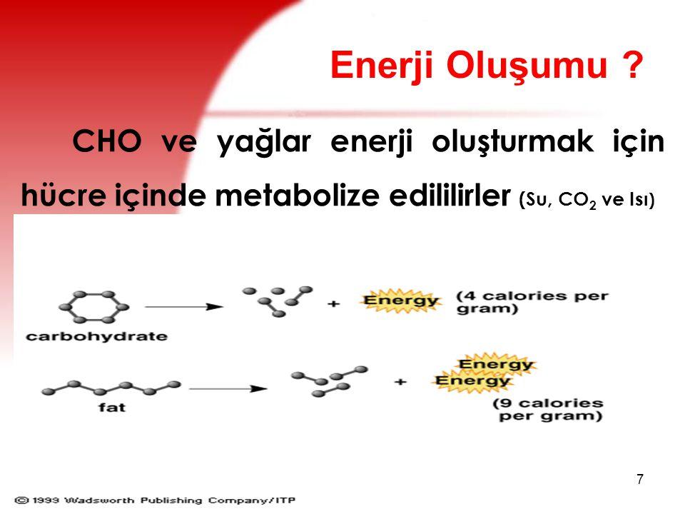 8 Proteinler hücre içinde enerji oluştururlar (H 2 O, N, CO 2 ve Isı).