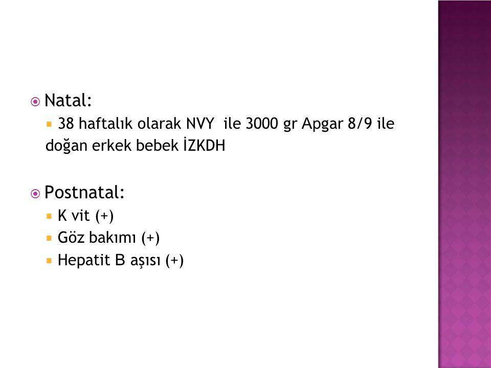  Natal:  38 haftalık olarak NVY ile 3000 gr Ap gar 8/9 ile doğan erkek bebek İZKDH  Postnatal:  K vit (+)  Göz bakımı (+)  Hepatit B aşısı (+)