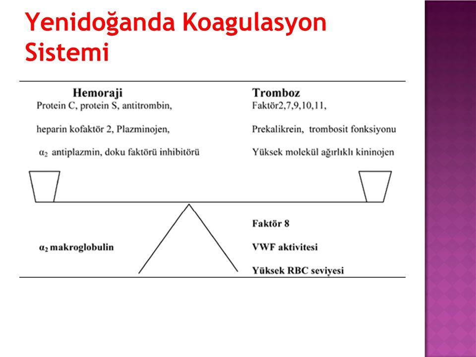 Yenidoğanda Koagulasyon Sistemi