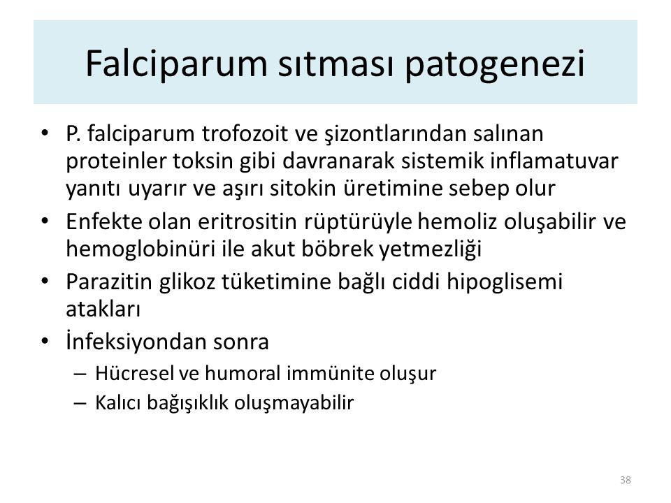 P. falciparum trofozoit ve şizontlarından salınan proteinler toksin gibi davranarak sistemik inflamatuvar yanıtı uyarır ve aşırı sitokin üretimine seb