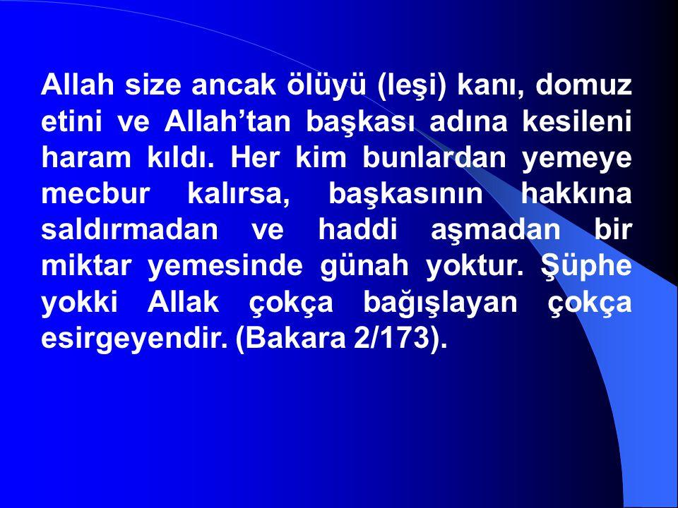 Allah size ancak ölüyü (leşi) kanı, domuz etini ve Allah'tan başkası adına kesileni haram kıldı. Her kim bunlardan yemeye mecbur kalırsa, başkasının h