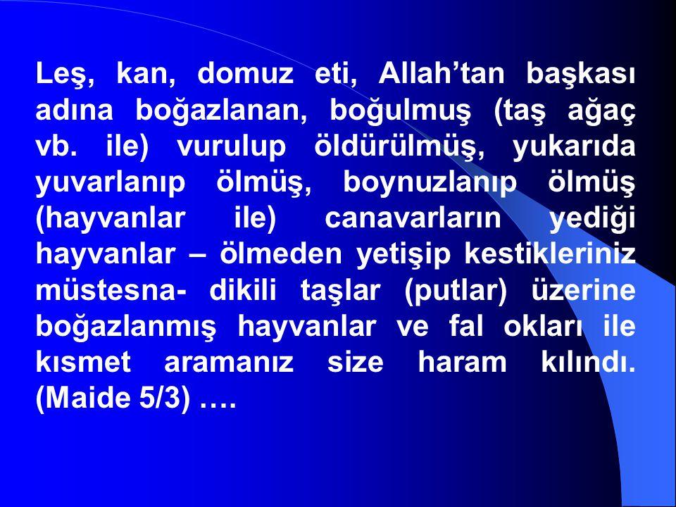 Leş, kan, domuz eti, Allah'tan başkası adına boğazlanan, boğulmuş (taş ağaç vb. ile) vurulup öldürülmüş, yukarıda yuvarlanıp ölmüş, boynuzlanıp ölmüş