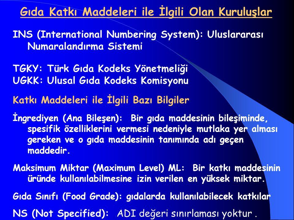 Gıda Katkı Maddeleri ile İlgili Olan Kuruluşlar INS (International Numbering System): Uluslararası Numaralandırma Sistemi TGKY: Türk Gıda Kodeks Yönet