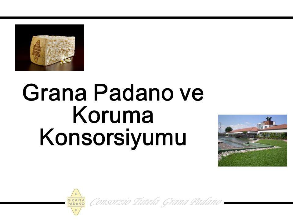 Grana Padano ve Koruma Konsorsiyumu