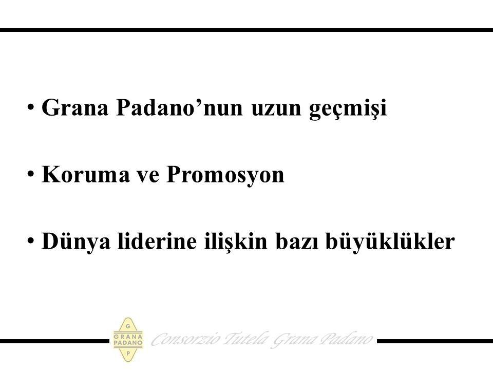 Grana Padano'nun uzun geçmişi Koruma ve Promosyon Dünya liderine ilişkin bazı büyüklükler