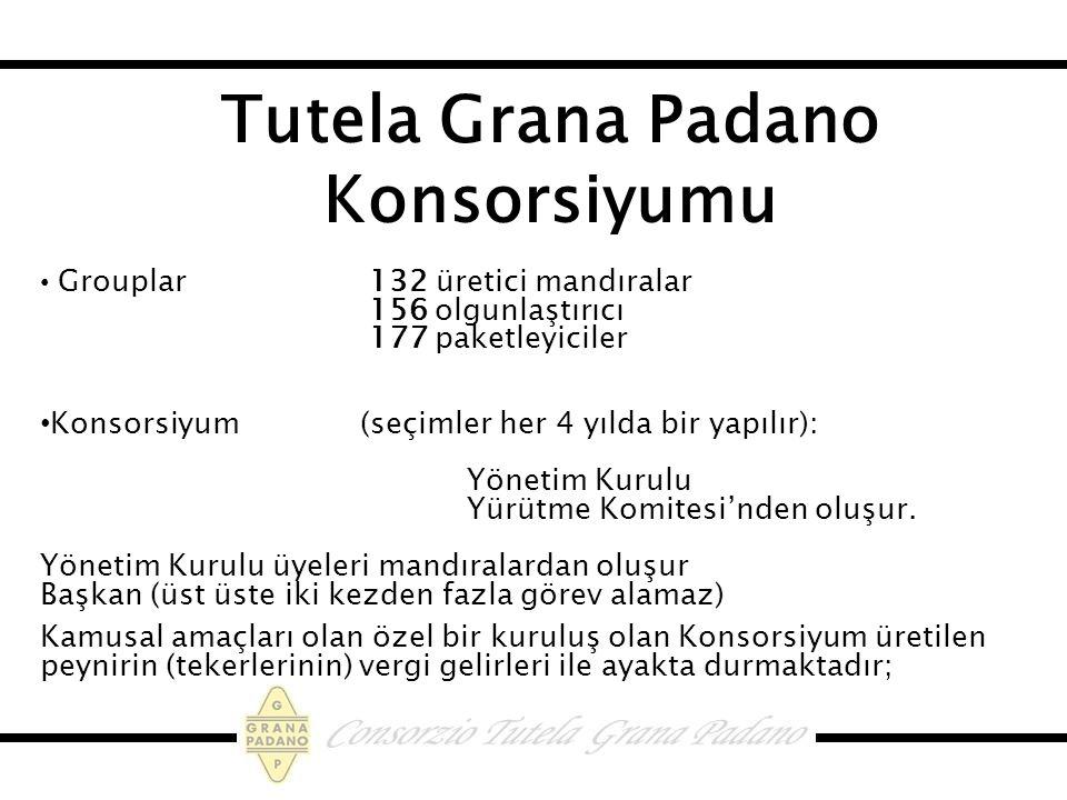 Tutela Grana Padano Konsorsiyumu Grouplar 132 üretici mandıralar 156 olgunlaştırıcı 177 paketleyiciler Konsorsiyum (seçimler her 4 yılda bir yapılır): Yönetim Kurulu Yürütme Komitesi'nden oluşur.