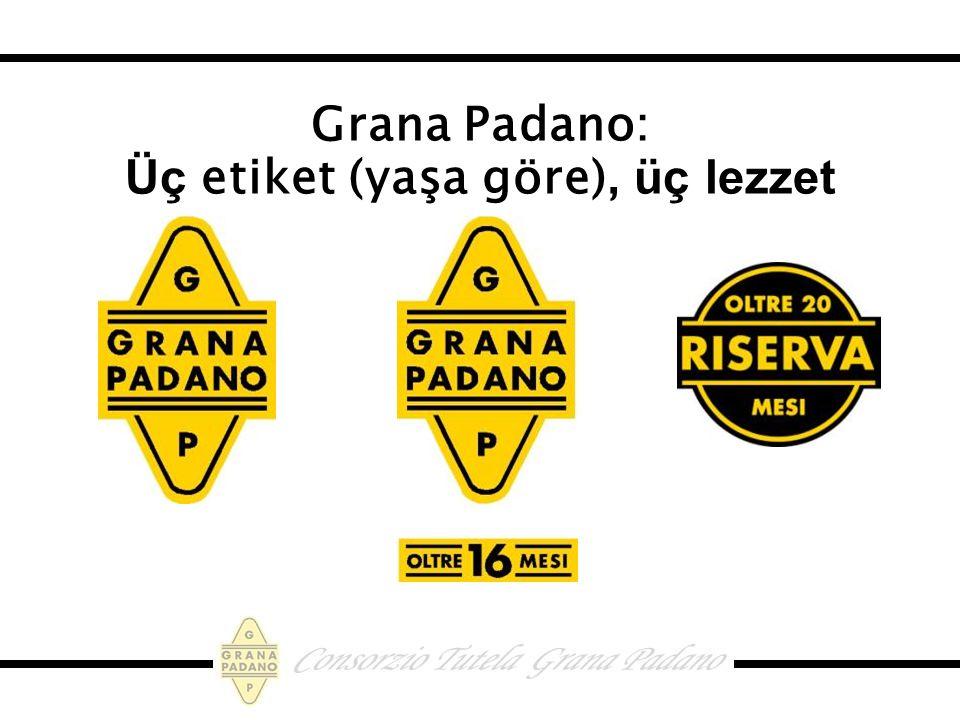 Grana Padano: Üç etiket (yaşa göre), üç lezzet