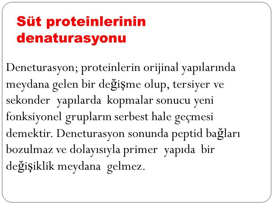 Süt proteinlerinin denaturasyonu Deneturasyon; proteinlerin orijinal yapılarında meydana gelen bir de ğ i ş me olup, tersiyer ve sekonder yapılarda kopmalar sonucu yeni fonksiyonel grupların serbest hale geçmesi demektir.