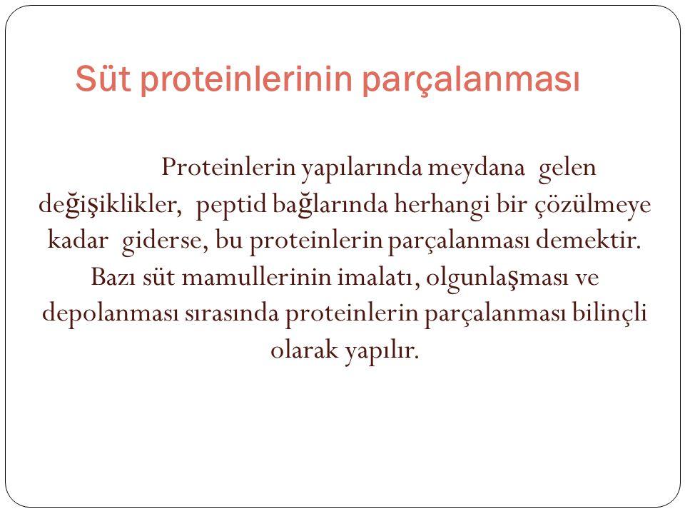 Süt proteinlerinin parçalanması Proteinlerin yapılarında meydana gelen de ğ i ş iklikler, peptid ba ğ larında herhangi bir çözülmeye kadar giderse, bu proteinlerin parçalanması demektir.