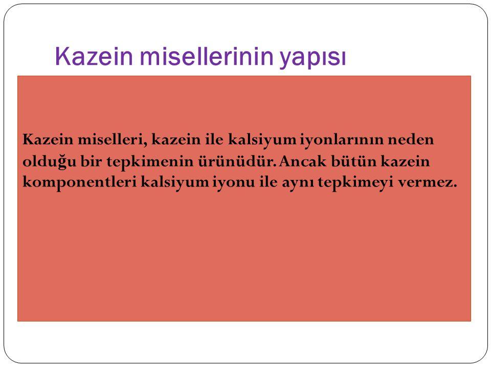 Kazein misellerinin yapısı Kazein miselleri, kazein ile kalsiyum iyonlarının neden oldu ğ u bir tepkimenin ürünüdür.