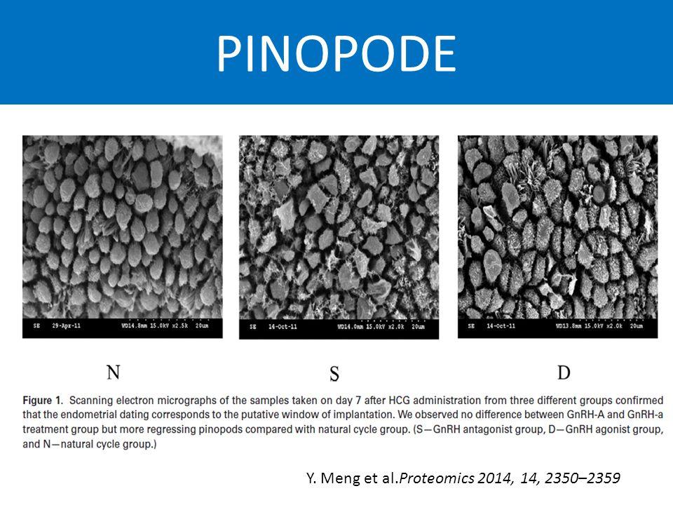 PINOPODE Y. Meng et al.Proteomics 2014, 14, 2350–2359