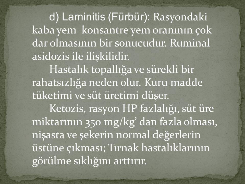 d) Laminitis (Fürbür): Rasyondaki kaba yem konsantre yem oranının çok dar olmasının bir sonucudur. Ruminal asidozis ile ilişkilidir. Hastalık topallığ
