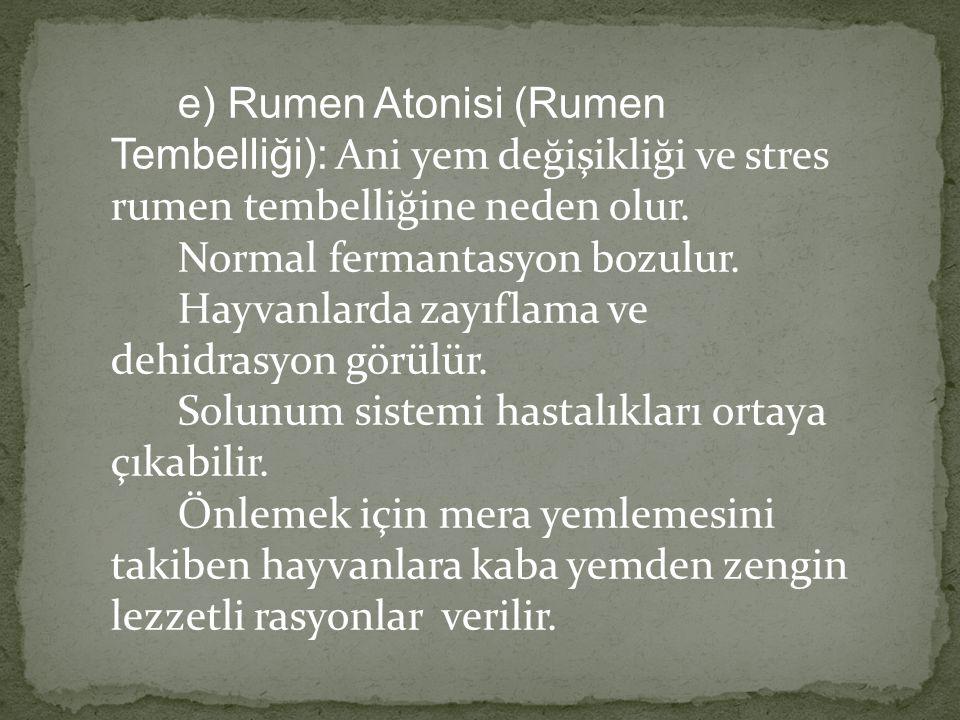 e) Rumen Atonisi (Rumen Tembelliği): Ani yem değişikliği ve stres rumen tembelliğine neden olur. Normal fermantasyon bozulur. Hayvanlarda zayıflama ve