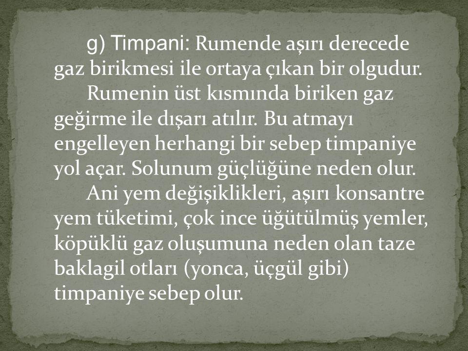 g) Timpani: Rumende aşırı derecede gaz birikmesi ile ortaya çıkan bir olgudur. Rumenin üst kısmında biriken gaz geğirme ile dışarı atılır. Bu atmayı e