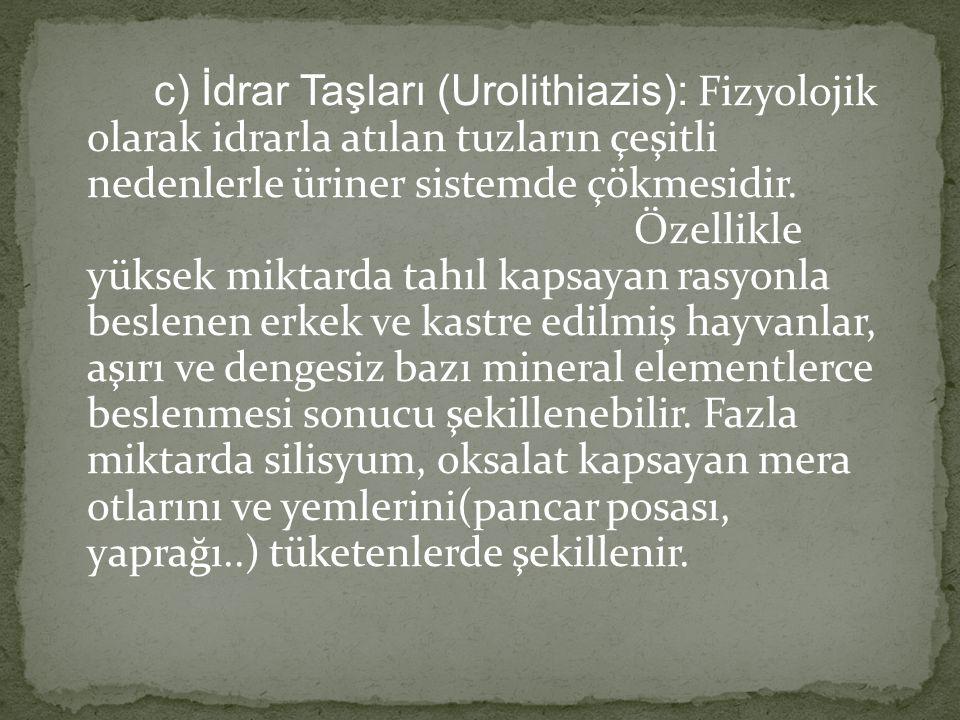 c) İdrar Taşları (Urolithiazis): Fizyolojik olarak idrarla atılan tuzların çeşitli nedenlerle üriner sistemde çökmesidir. Özellikle yüksek miktarda ta