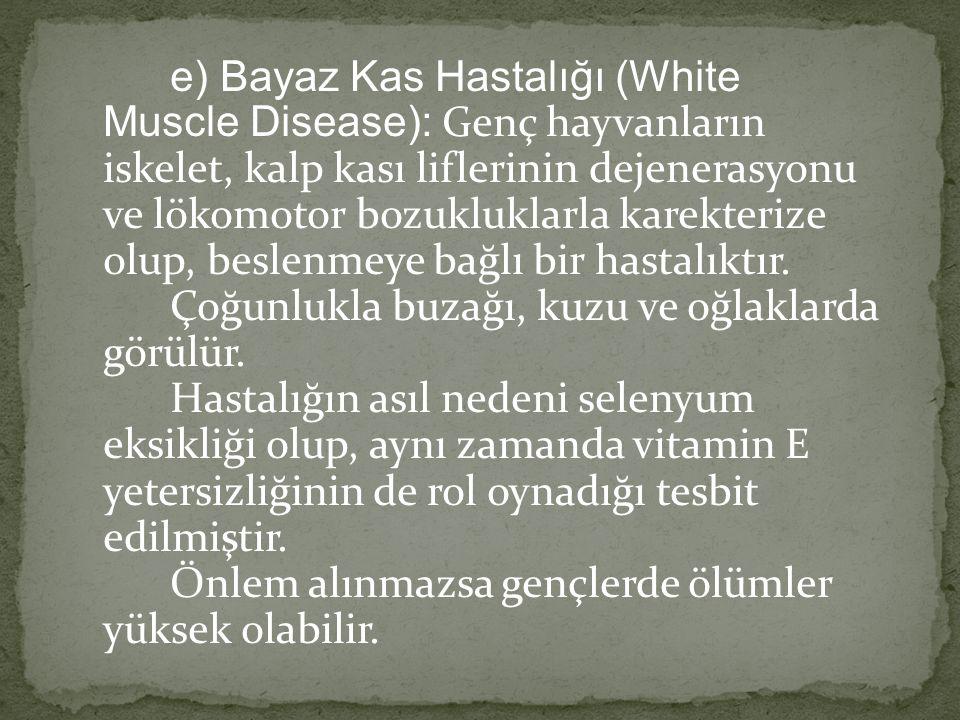 e) Bayaz Kas Hastalığı (White Muscle Disease): Genç hayvanların iskelet, kalp kası liflerinin dejenerasyonu ve lökomotor bozukluklarla karekterize olu