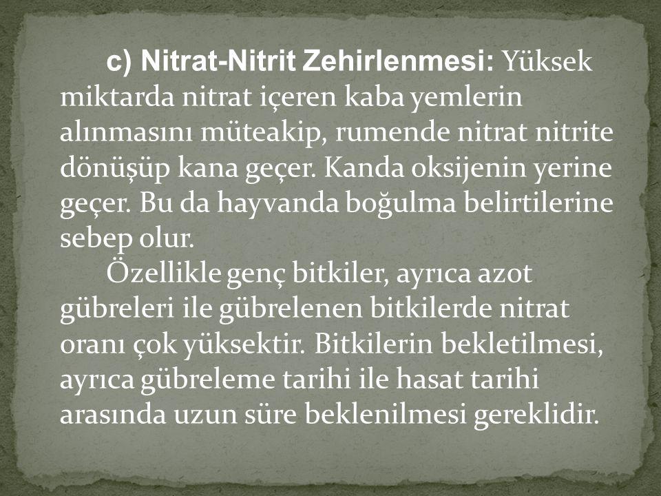 c) Nitrat-Nitrit Zehirlenmesi: Yüksek miktarda nitrat içeren kaba yemlerin alınmasını müteakip, rumende nitrat nitrite dönüşüp kana geçer. Kanda oksij