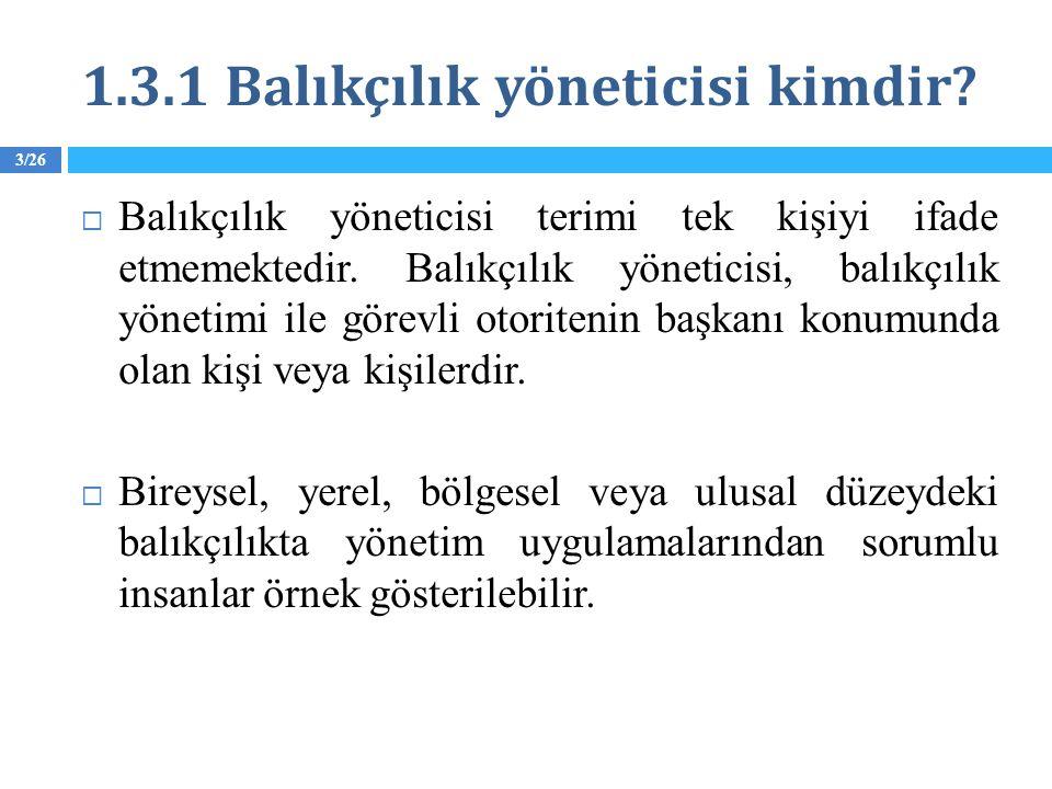 1.3.1 Balıkçılık yöneticisi kimdir. Balıkçılık yöneticisi terimi tek kişiyi ifade etmemektedir.
