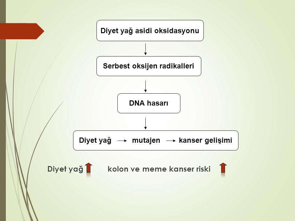 Diyet yağ kolon ve meme kanser riski Diyet yağ asidi oksidasyonu Serbest oksijen radikalleri DNA hasarı Diyet yağ mutajen kanser gelişimi