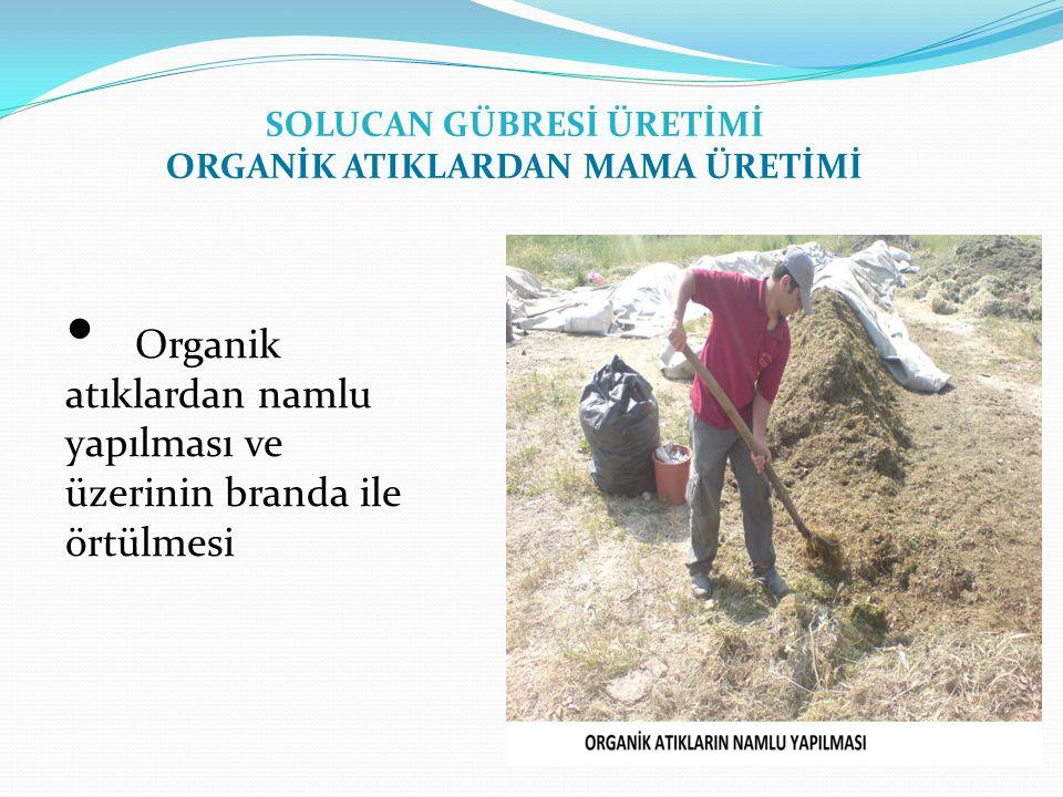Organik atıklardan namlu yapılması ve üzerinin branda ile örtülmesi SOLUCAN GÜBRESİ ÜRETİMİ ORGANİK ATIKLARDAN MAMA ÜRETİMİ