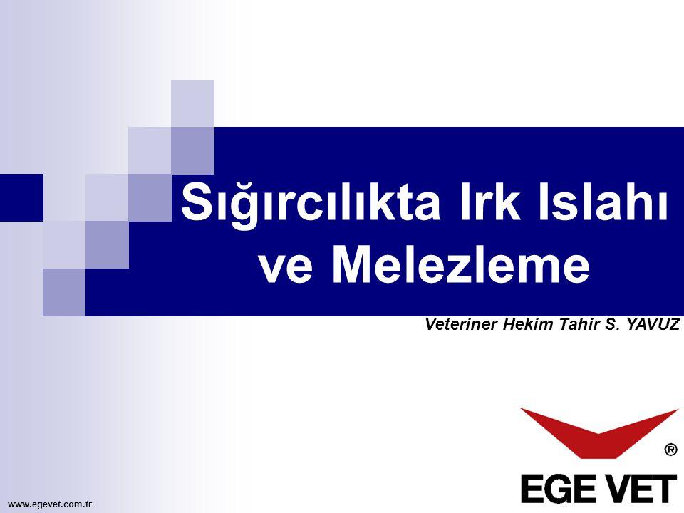 Veteriner Hekim Tahir S. YAVUZ Sığırcılıkta Irk Islahı ve Melezleme www.egevet.com.tr