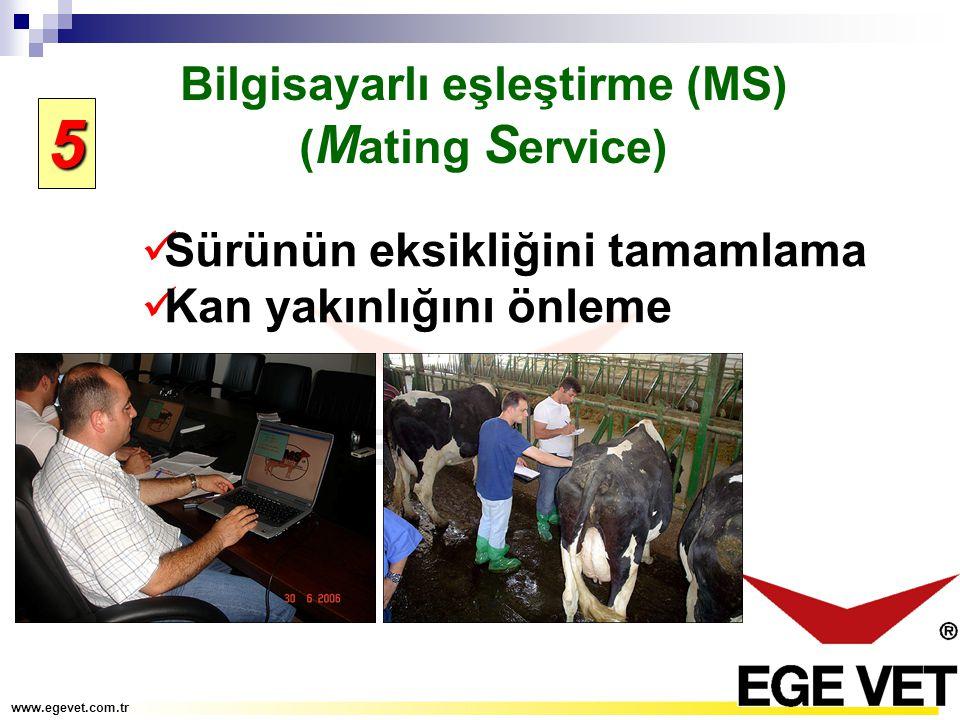 Bilgisayarlı eşleştirme (MS) ( M ating S ervice) Sürünün eksikliğini tamamlama Kan yakınlığını önleme www.egevet.com.tr 5