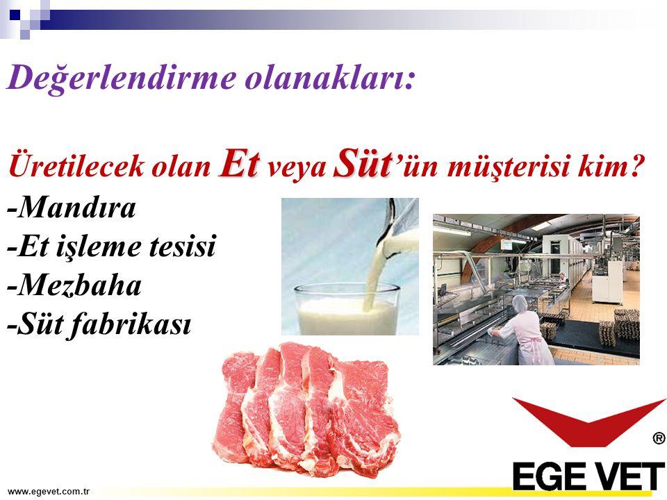 Değerlendirme olanakları: EtSüt Üretilecek olan Et veya Süt 'ün müşterisi kim? -Mandıra -Et işleme tesisi -Mezbaha -Süt fabrikası www.egevet.com.tr