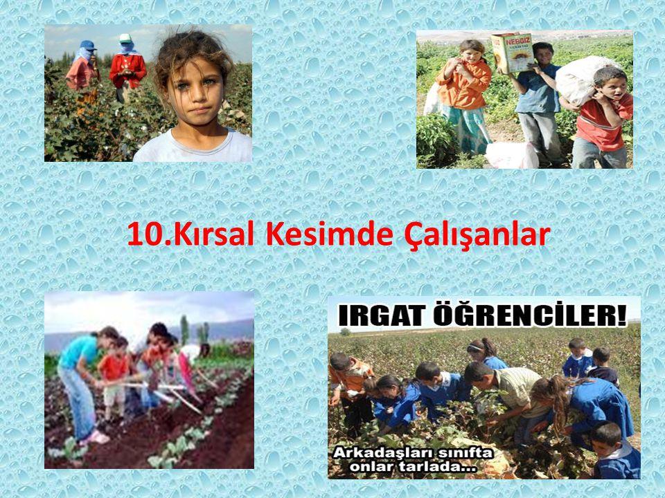 10.Kırsal Kesimde Çalışanlar