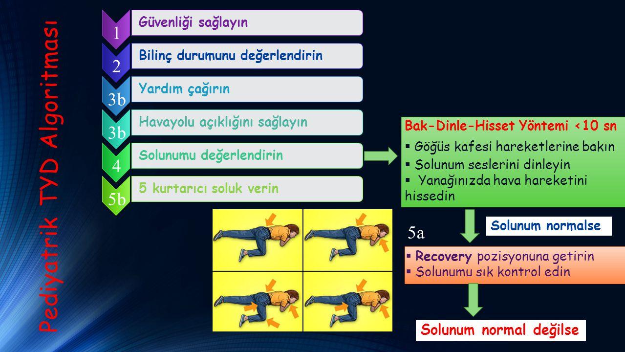 Güvenliği sağlayınBilinç durumunu değerlendirinYardım çağırın Pediyatrik TYD Algoritması 1 2 3b Havayolu açıklığını sağlayın 3b Solunumu değerlendirin 4 Bak-Dinle-Hisset Yöntemi <10 sn  Göğüs kafesi hareketlerine bakın  Solunum seslerini dinleyin  Yanağınızda hava hareketini hissedin Solunum normalse  Recovery pozisyonuna getirin  Solunumu sık kontrol edin 5a Solunum normal değilse 5 kurtarıcı soluk verin 5b