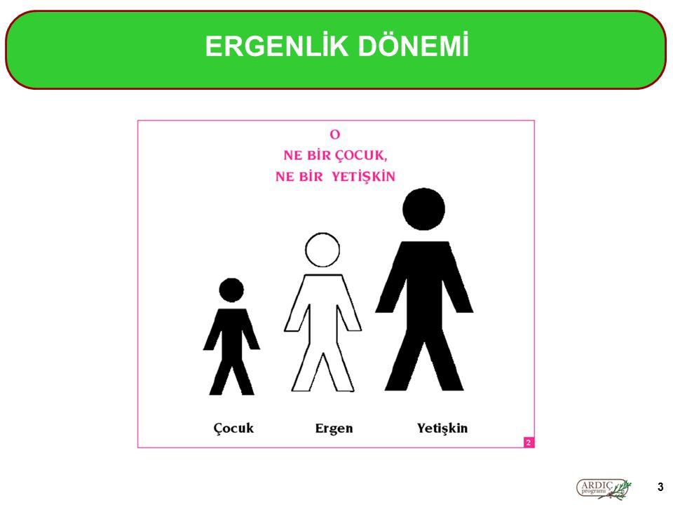 ERGENLİK DÖNEMİ 3