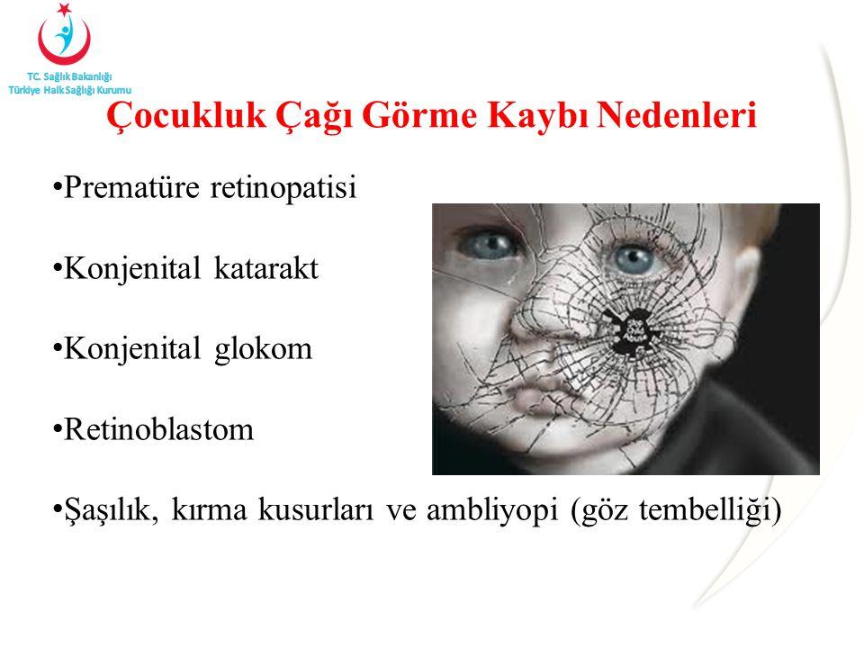 Çocukluk Çağı Görme Kaybı Nedenleri Prematüre retinopatisi Konjenital katarakt Konjenital glokom Retinoblastom Şaşılık, kırma kusurları ve ambliyopi (göz tembelliği)