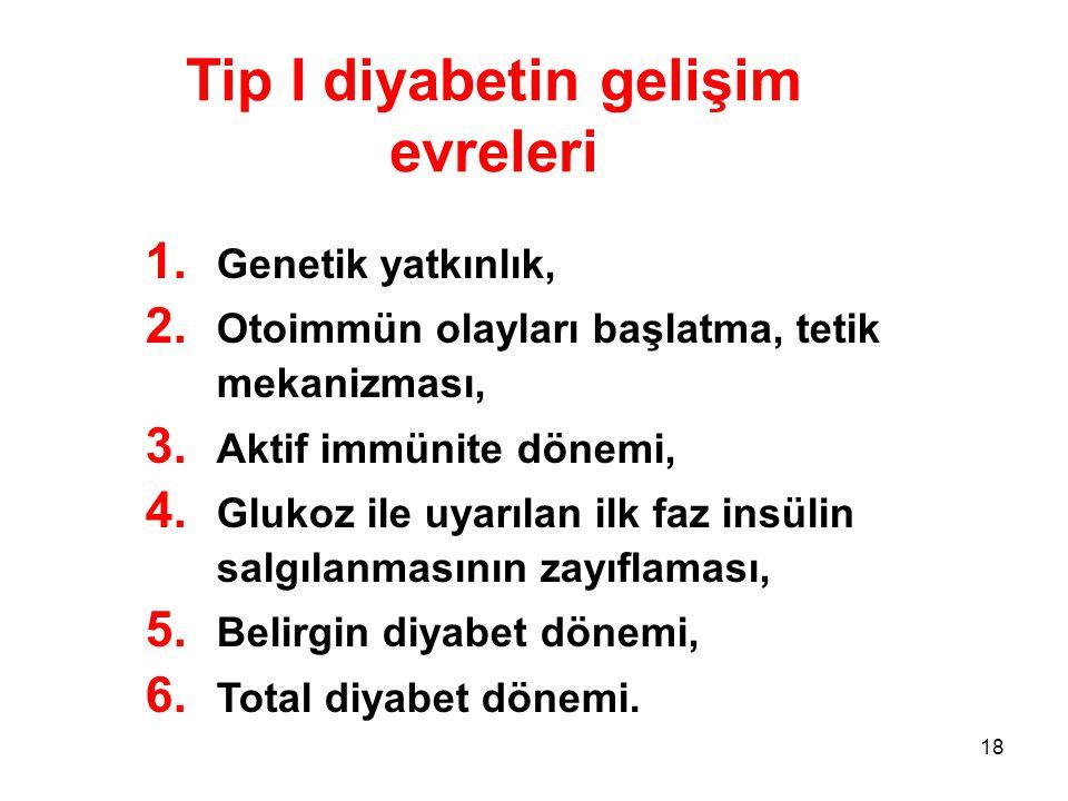 18 Tip I diyabetin gelişim evreleri 1. Genetik yatkınlık, 2. Otoimmün olayları başlatma, tetik mekanizması, 3. Aktif immünite dönemi, 4. Glukoz ile uy