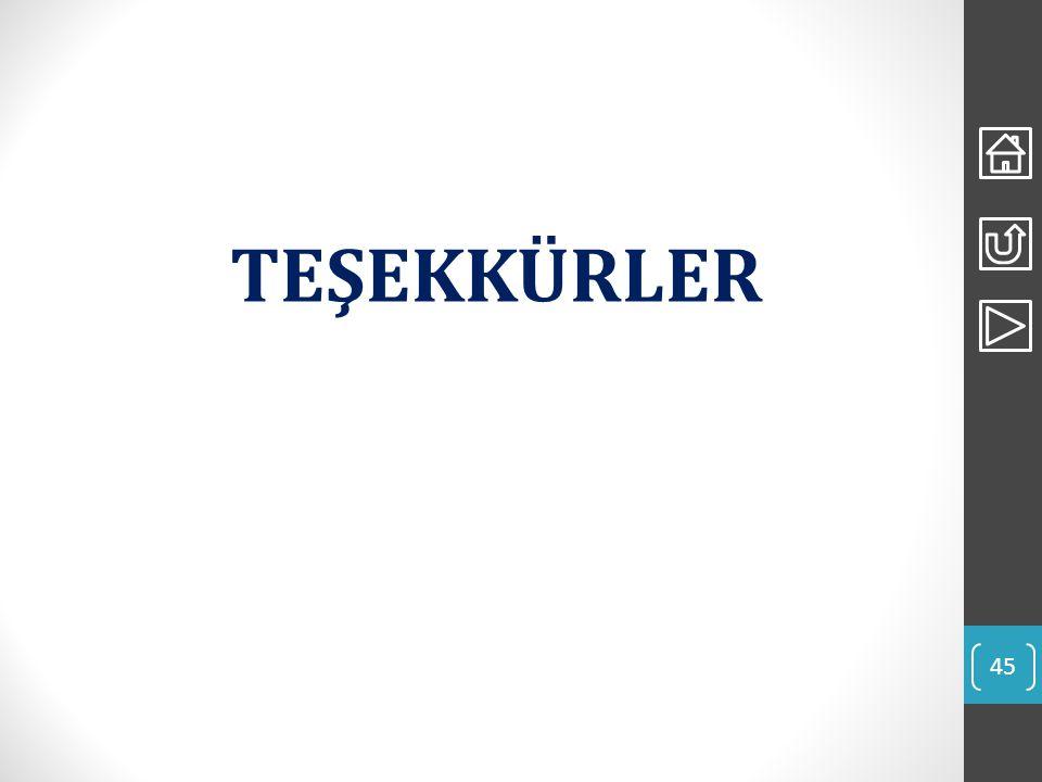 TEŞEKKÜRLER 45