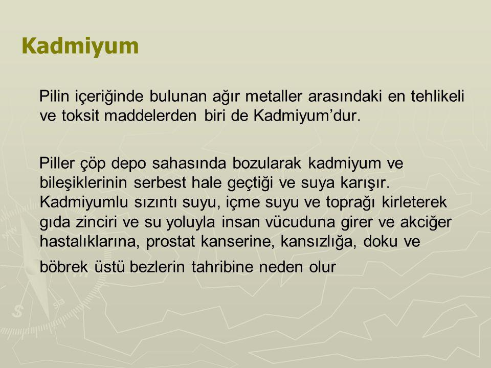 Kadmiyum Pilin içeriğinde bulunan ağır metaller arasındaki en tehlikeli ve toksit maddelerden biri de Kadmiyum'dur. Piller çöp depo sahasında bozulara